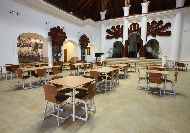 Soliwood stoličky