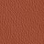 AN-koženka hnedá