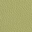 AN- koženka zelená